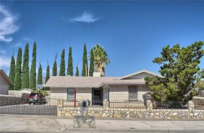 El Paso Single Family Home For Sale: 10429 Bon Aire Drive