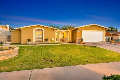 El Paso Single Family Home For Sale: 6616 Pino Real Drive
