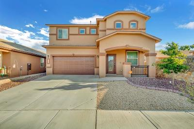 El Paso TX Single Family Home For Sale: $201,199