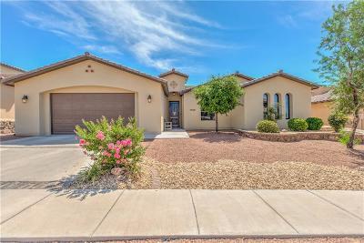 El Paso TX Single Family Home For Sale: $289,000