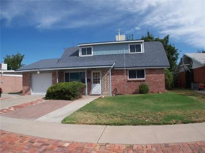 El Paso Single Family Home For Sale: 10141 Saigon Drive