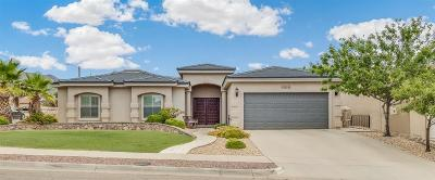 El Paso Single Family Home For Sale: 1514 Cimarron Ridge Drive