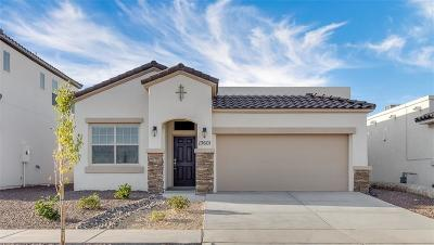El Paso TX Single Family Home For Sale: $205,635