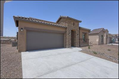 El Paso Single Family Home For Sale: 808 Oxfordshire Street