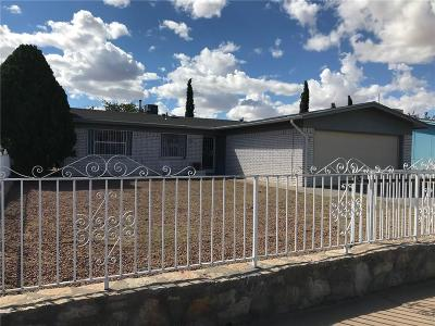 El Paso Single Family Home For Sale: 10813 Sunstone Street