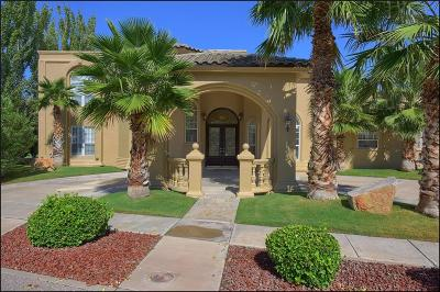 El Paso Single Family Home For Sale: 605 Meadow Willow Drive