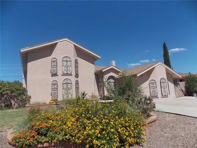 El Paso Single Family Home For Sale: 7316 Armistad Avenue
