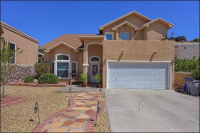 El Paso Single Family Home For Sale: 1607 Villa Del Sol Drive