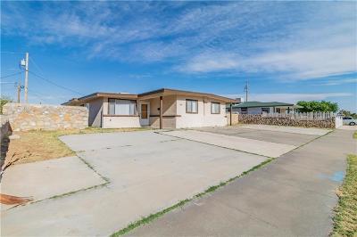 El Paso Multi Family Home For Sale: 8632 Neptune Street #8632 & 8