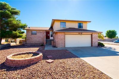 El Paso Single Family Home For Sale: 700 El Parque Drive