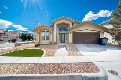 El Paso TX Single Family Home For Sale: $164,950