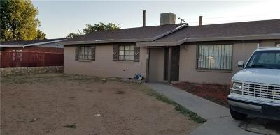 El Paso Single Family Home For Sale: 9507 Salisbury Drive