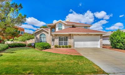 El Paso Single Family Home For Sale: 6329 Loma De Cristo Drive