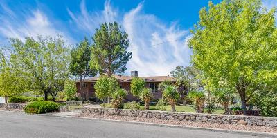 El Paso Single Family Home Active with Contingency: 1231 Stockwell Lane