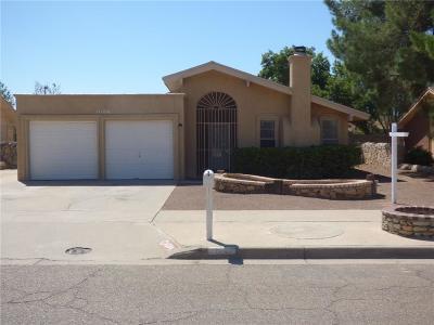 El Paso Single Family Home For Sale: 11184 Paducah Avenue