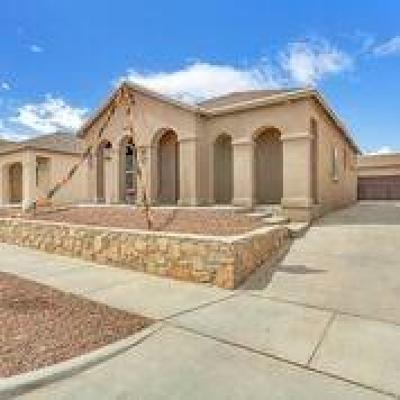 Single Family Home For Sale: 14389 Chris Zingo Lane