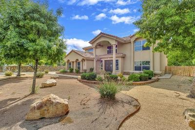 Single Family Home For Sale: 5045 Amen