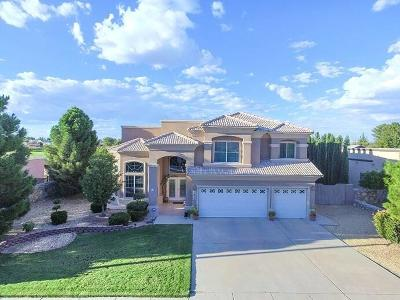 Single Family Home For Sale: 1015 Los Moros Drive