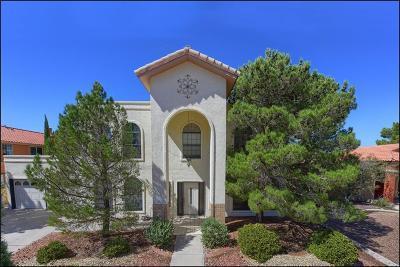 El Paso Single Family Home For Sale: 825 Dulce Tierra Drive
