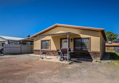 Canutillo Single Family Home For Sale: 6741 Third Street