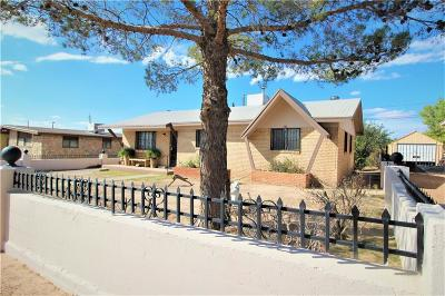 Canutillo Single Family Home For Sale: 1505 Banker Road