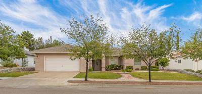 El Paso Single Family Home For Sale: 1312 Desert Canyon Drive