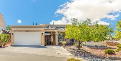 El Paso Single Family Home For Sale: 6016 Ojo De Agua Drive