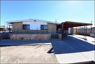 Canutillo Single Family Home For Sale: 8710 De Alva Drive