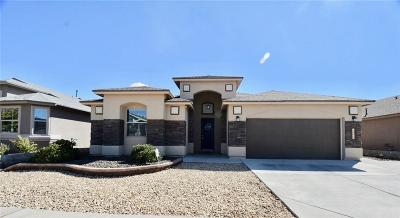 El Paso Single Family Home For Sale: 12656 Paseo Rosannie Avenue