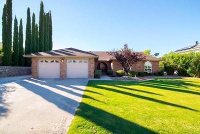 El Paso Single Family Home For Sale: 6620 Brisa Del Mar Drive