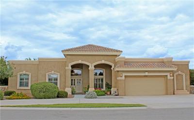 Single Family Home For Sale: 1055 Dona Beatriz Circle