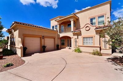 El Paso Single Family Home For Sale: 6243 Franklin Eagle Court