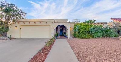 El Paso Single Family Home For Sale: 413 Valplano Drive