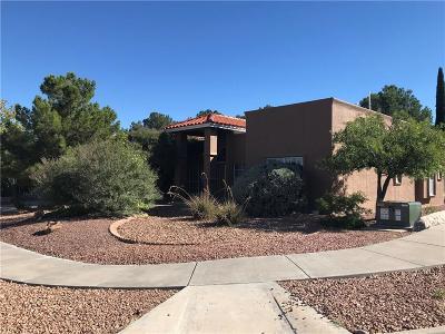 El Paso Single Family Home For Sale: 6500 Jim De Groat Drive