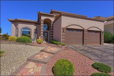 El Paso Single Family Home For Sale: 6329 Franklin Red Drive