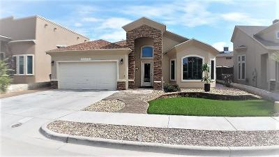 Single Family Home For Sale: 3170 Spring Willow