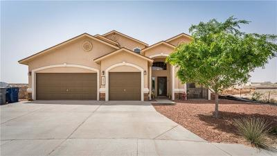 Single Family Home For Sale: 3029 Lookout Point Place