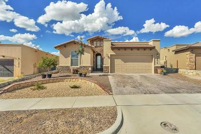 Horizon City Single Family Home For Sale: 12019 Equestrian Road
