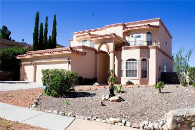El Paso Single Family Home For Sale: 6023 Los Siglos Drive