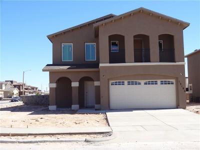 Horizon City Single Family Home For Sale: 12448 Chamberlain Drive