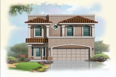 Horizon City Single Family Home For Sale: 12452 Chamberlain Drive