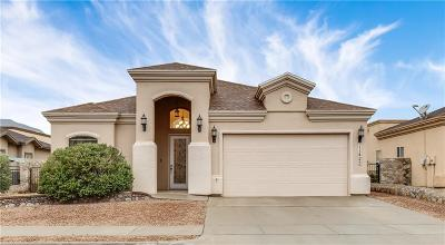 Single Family Home For Sale: 11425 Victor Flores Place