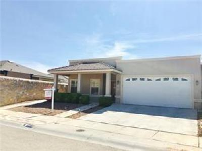 Single Family Home For Sale: 3820 Tierra Tania
