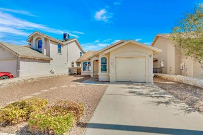 El Paso Single Family Home For Sale: 9912 Marine