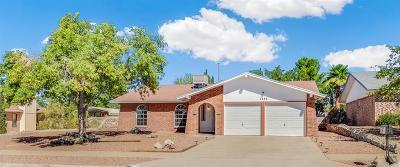 El Paso Single Family Home For Sale: 7753 Toltec Drive