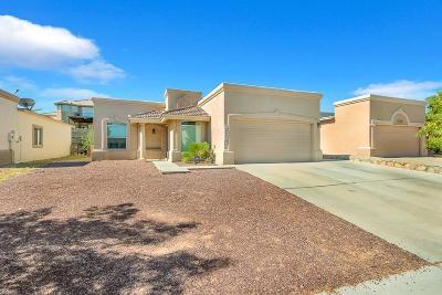 Single Family Home For Sale: 12432 Jon Evans
