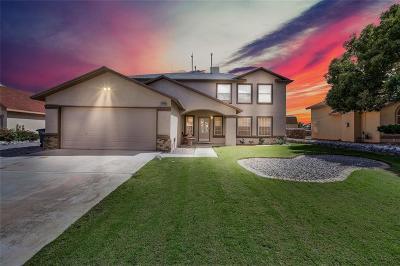 North Hills Single Family Home For Sale: 10890 Loma De Alma Drive