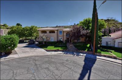 El Paso Single Family Home For Sale: 6600 Quail Cove Court