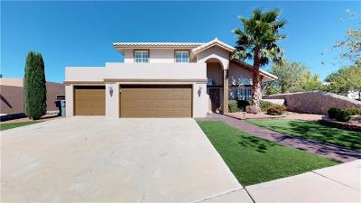 El Paso Single Family Home For Sale: 6901 Desert Canyon Drive