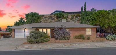 El Paso Single Family Home For Sale: 765 Castile Avenue